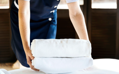 Why Maid Service SEO Specialists Are Better Than Standard Marketers